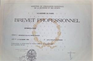 Pierre Delaye expert gemmologue au près de la cour d appel de Dijon