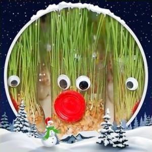 Spécial fêtes de Noël: Le Comptoir Universel de l'Or  aime le blé de l'espérance